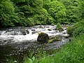 River Doon - geograph.org.uk - 821804.jpg