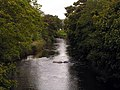 River Ehen, below Thornhill - geograph.org.uk - 55351.jpg