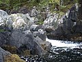River Kerry just about to enter Loch Kerry - geograph.org.uk - 809072.jpg