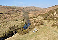 River Meavy above Burrator.jpg