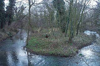 River Meden river in Nottinghamshire, United Kingdom