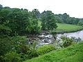 River Ribble - geograph.org.uk - 827427.jpg