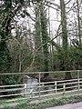 River Tud with footbridge across it - geograph.org.uk - 667253.jpg