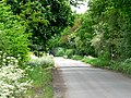 Road to Seaton Common - geograph.org.uk - 178446.jpg