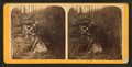 Rocky Falls, Patch Brook, from Robert N. Dennis collection of stereoscopic views.png