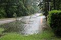 Roman Forest Flood - 4-18-16 (26486147906).jpg