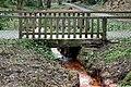 Rombergpark-100330-11340-Brücke.jpg