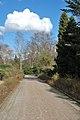 Rombergpark-100331-11596-Parkweg.jpg