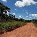 Route de ROURA en Guyane française.jpg