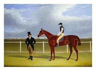 Rowton (horse) British-bred Thoroughbred racehorse
