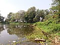 Ruined Nilkuthi and Pond at Manirampur in Hooghly 02.jpg