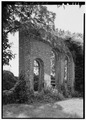 STANDING WALL (OBLIQUE VIEW) - Mount Airy, Orangery (Ruins), State Route 646 vicinity, Warsaw, Richmond, VA HABS VA,80-WAR.V,4E-2.tif