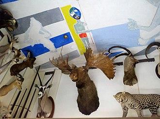Musée de la Chasse et de la Nature - Salle des Trophées