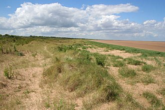 Mablethorpe - Image: Saltfleetby Theddlethorpe Dunes Nature Reserve geograph.org.uk 480929