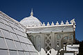 San Francisco Conservatory of Flowers-23.jpg