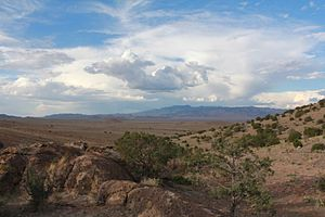 San Mateo Mountains (Socorro County, New Mexico) - A view from the San Mateo Mountains.