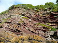 Sandstone cliff at Portishead - geograph.org.uk - 1399999.jpg