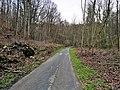 Sandweiler, réserve naturelle Birelergronn (106).jpg