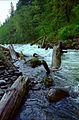 Sandy River (14596147971).jpg