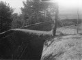 Schützengraben am Waldrand - CH-BAR - 3241791.tif