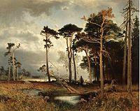 Schaeffer-Forest.jpg