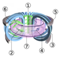 Schematic-of-a-tokamak-chamber-and-magnetic-profile.png