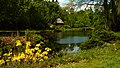 Schlosspark Lütetsburg - 20140503135047.jpg