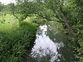Seacourt Stream - geograph.org.uk - 872839.jpg