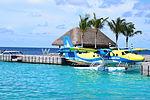 Seaplane at W Retreat Maldives.jpg