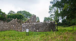 Seir Kieran Round Tower and Priory Wall 2010 09 09.jpg