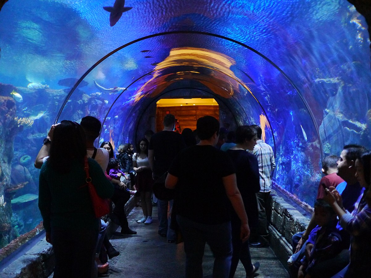 The underwater tunnel at Shark Reef at Mandalay Bay This popular attraction is situated on the far south end of Mandalay Bay, near the convention center. It's a long walk from the casino floor, past the walkway to the events center, and past the Border Grill and the wedding chapel.