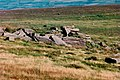 Sharp Tor on Dartmoor - geograph.org.uk - 107178.jpg