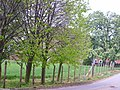 Sidney House - geograph.org.uk - 417012.jpg