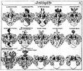 Siebmacher 1701-1705 B053.jpg