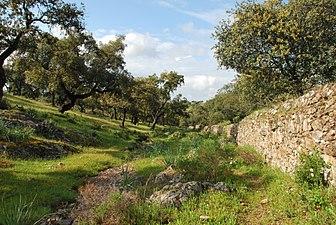 Sierra de Aracena y Picos de Aroche.jpg