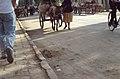 Silk Road 1992 (4367125911).jpg