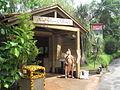 Singapore Zoo 38.JPG