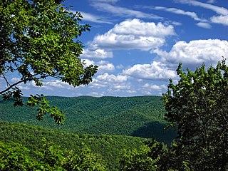Grove Township, Cameron County, Pennsylvania Township in Pennsylvania, United States