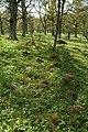 Skånings-Åsaka 35-1 - KMB - 16001000113108.jpg