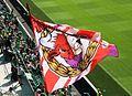 Sk Rapid Wien gegen RB Salzburg 11.jpg