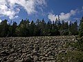 Skuleskogen National Park stonefield.jpg
