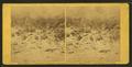 Slaughter Pen on left wing at Battle of Gettysburg, by Gardner, Alexander, 1821-1882.png