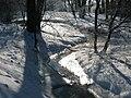 Slavonicky potok v zime - 02.JPG