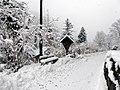 Snowfall in Segonzano 04.jpg