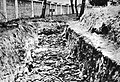 Soviet soldiers mass grave, German war prisoners concentration camp in Deblin, German-occupied Poland.jpg