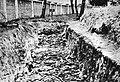 Soviet soldiers mass grave, German war prisoners concentration camp in Deblin, German-occupied Poland.jpg