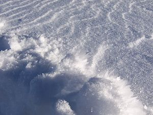 Snow - Fresh snow beginning to metamorphose: The surface shows wind packing and sastrugi. In the foreground are hoar frost crystals, formed by refrozen water vapor emerging to the cold surface.