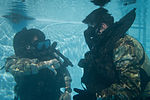 Special Forces Soldiers conduct scuba recertification 150120-A-KJ310-011.jpg