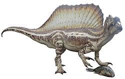 Spinosaurus - Museu Blau - 2016 - (white background)
