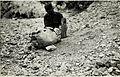Spitze und Sprengstücke einer 42cm Granate in Valmorbia. (BildID 15587630).jpg